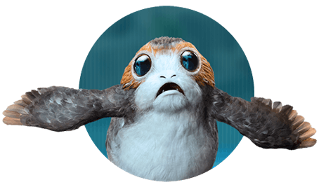Welcoming Porgs to the Magicverse