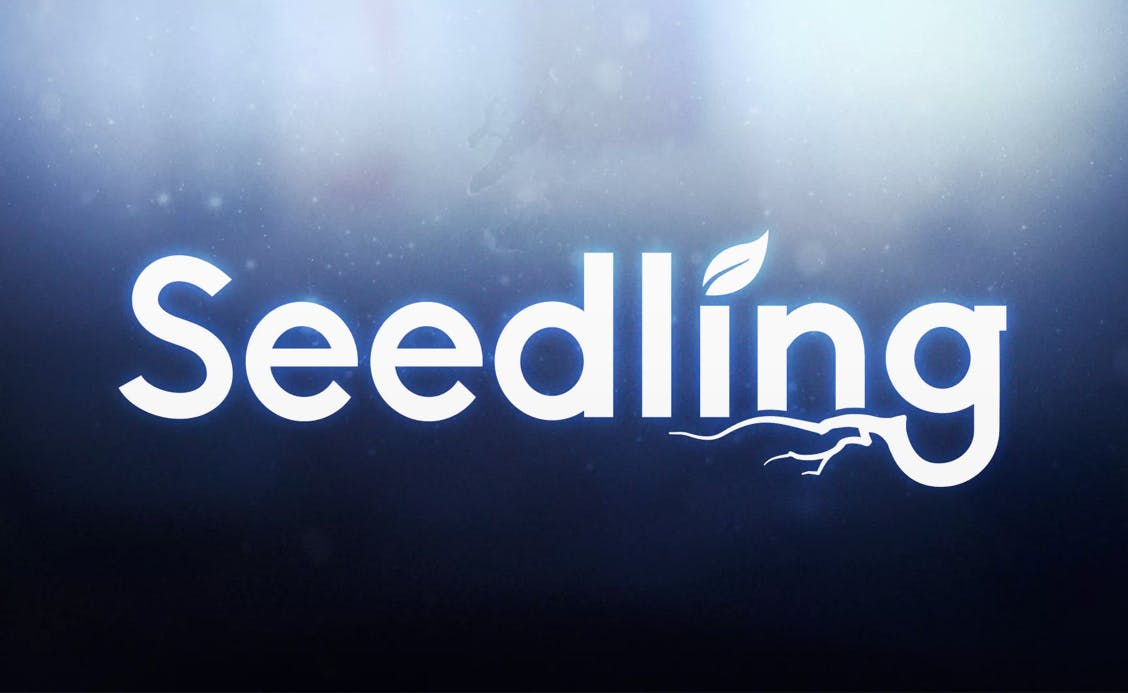 Seedling, a Magic Leap One experience
